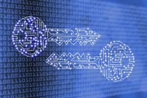 Países estão violando o direito a mensagens criptografadas, diz especialista da ONU